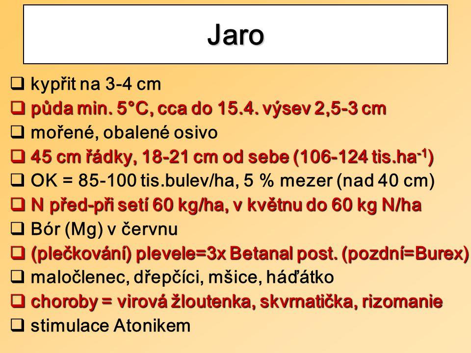 Jaro  kypřit na 3-4 cm  půda min. 5°C, cca do 15.4.