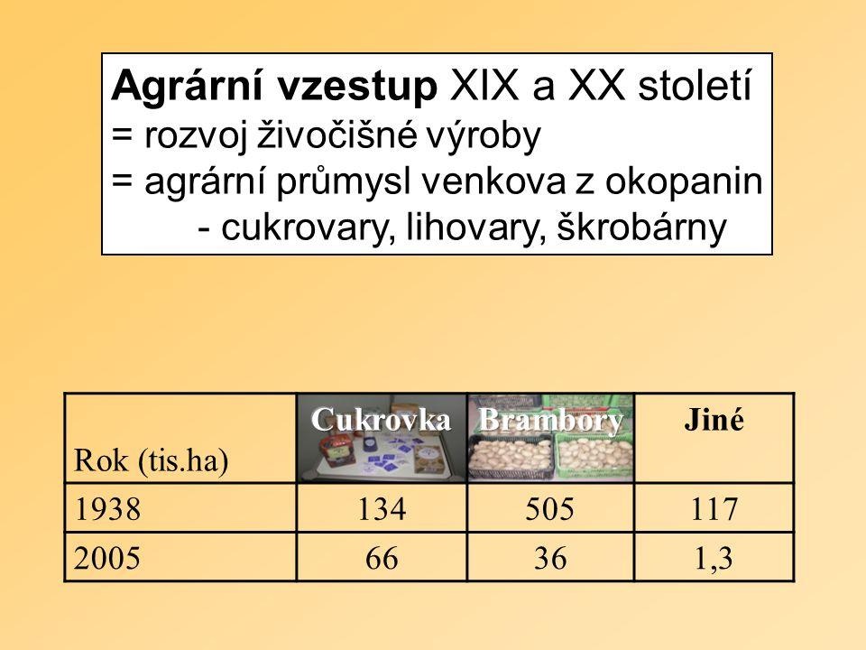 Agrární vzestup XIX a XX století = rozvoj živočišné výroby = agrární průmysl venkova z okopanin - cukrovary, lihovary, škrobárny Rok (tis.ha) Jiné 1938134505117 200566361,3