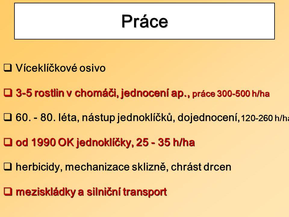  Víceklíčkové osivo  3-5 rostlin v chomáči, jednocení ap., práce 300-500 h/ha  60.