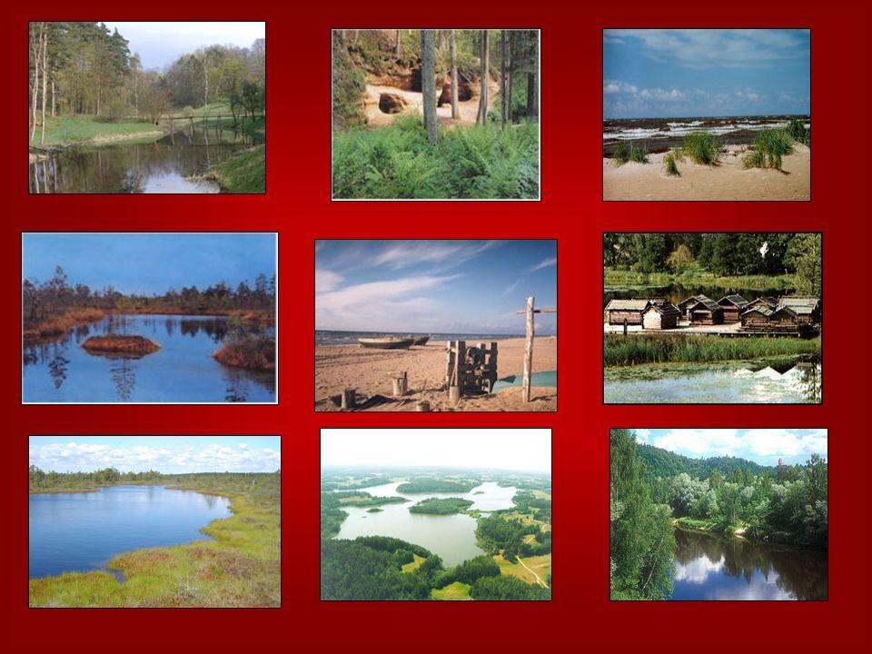 Příroda v Lotyšsku zachovalá divoká přírod 5% lotyšského území tvoří otevřené bažiny (Teiči (Teiči ) 3 národní parky (Gauja, (Gauja, Kemeri, Kemeri, Slïtere) 6,8% lotyšského území je chráněno zákonem 4 rezervace, 1 biosférická rezervace (Severovidzemská, zahrnující rozsáhlé území v povodí řeky Salacy), 6 chráněných chráněných krajinných oblastí,,ZEMĚ MODRÝCH JEZER ČERNÝ ČÁP NP NP KEMERI