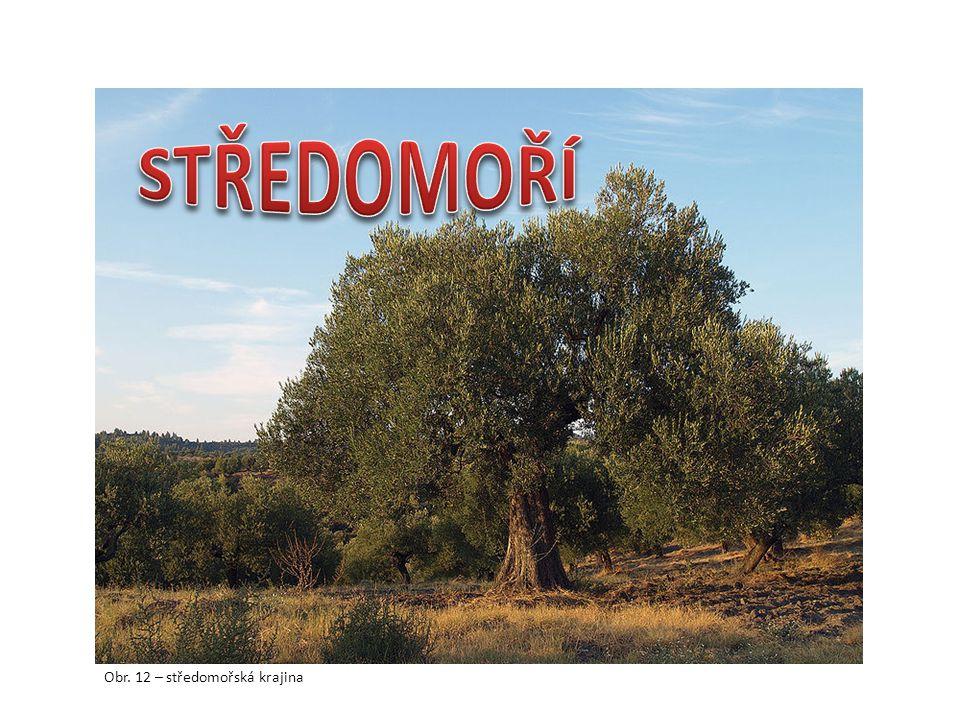 Obr. 12 – středomořská krajina