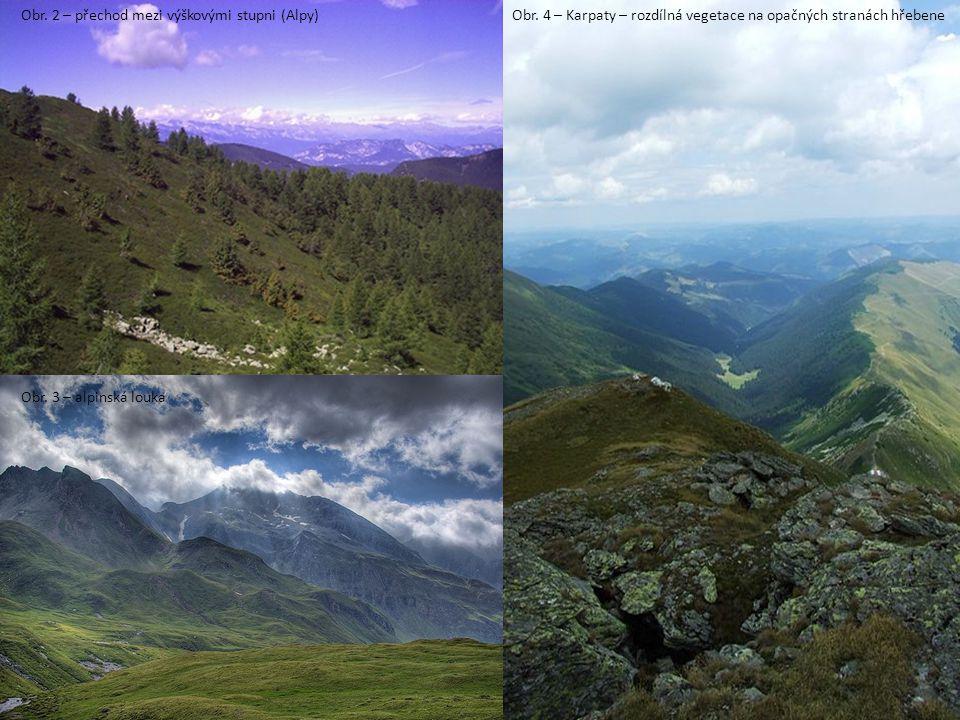 Obr.2 – přechod mezi výškovými stupni (Alpy) Obr.