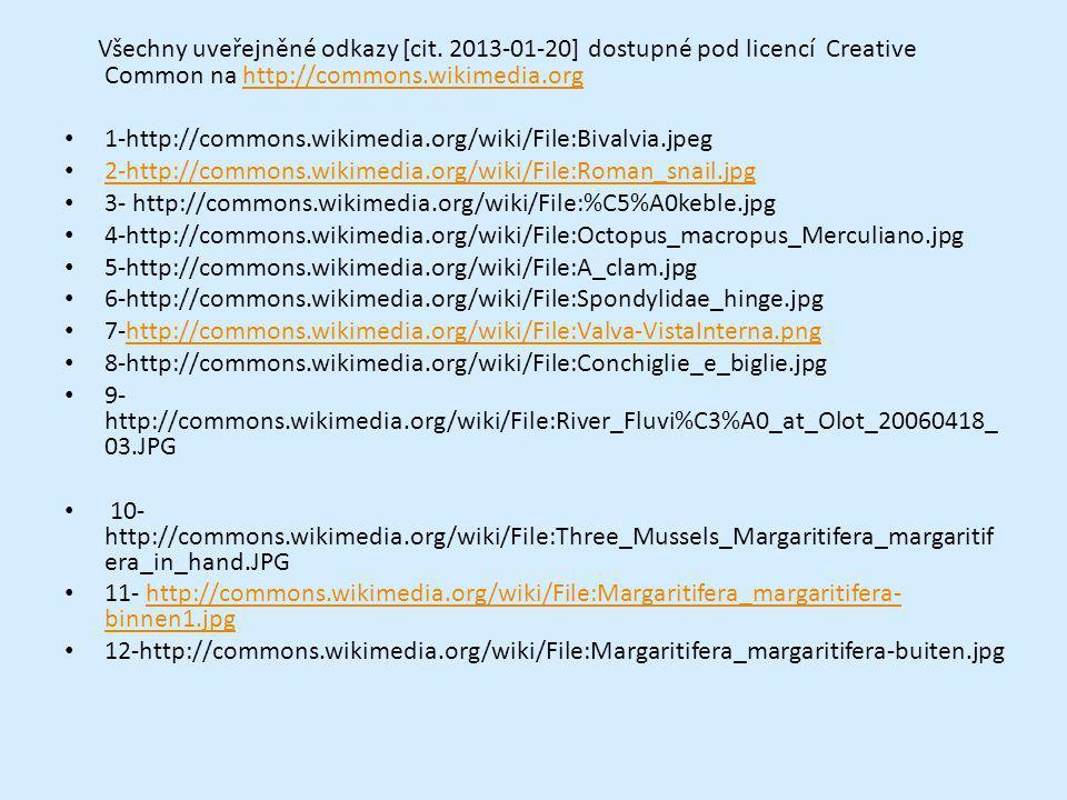 Všechny uveřejněné odkazy [cit. 2013-01-20] dostupné pod licencí Creative Common na http://commons.wikimedia.orghttp://commons.wikimedia.org 1-http://