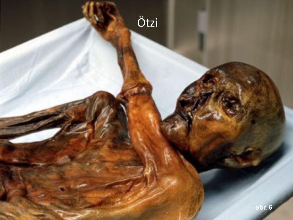Ötzi obr. 6