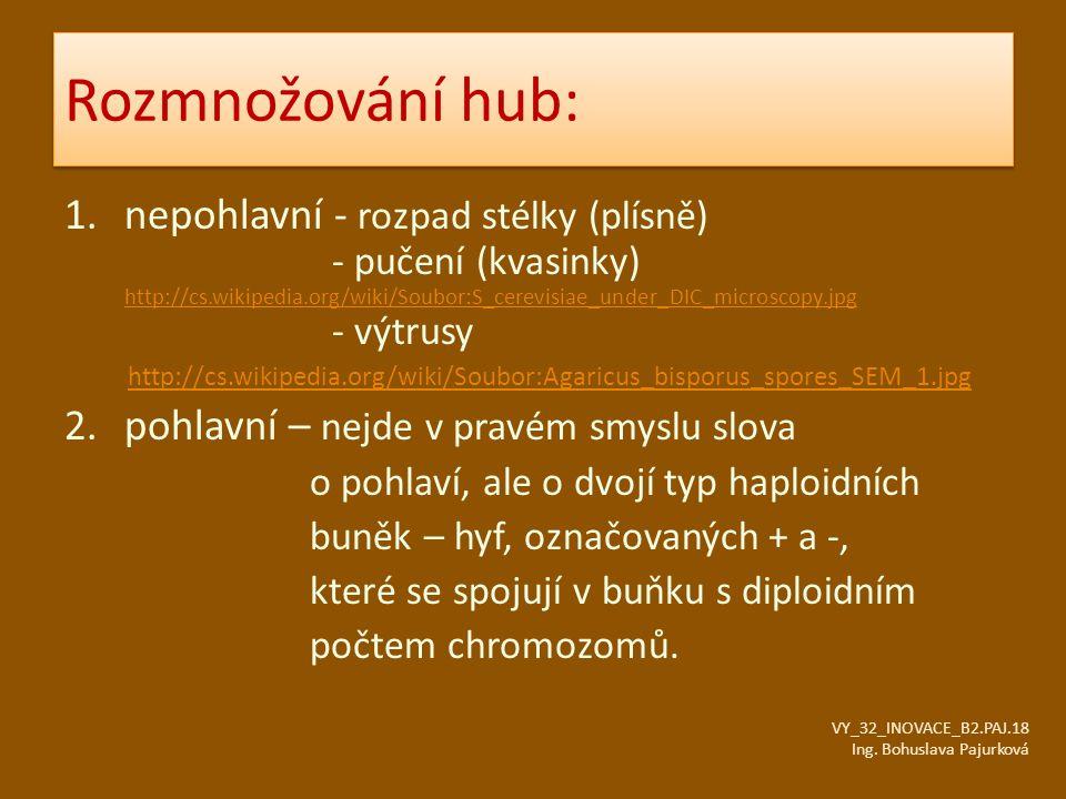 Citace: VY_32_INOVACE_B2.PAJ.18 Ing.Bohuslava Pajurková Obr.