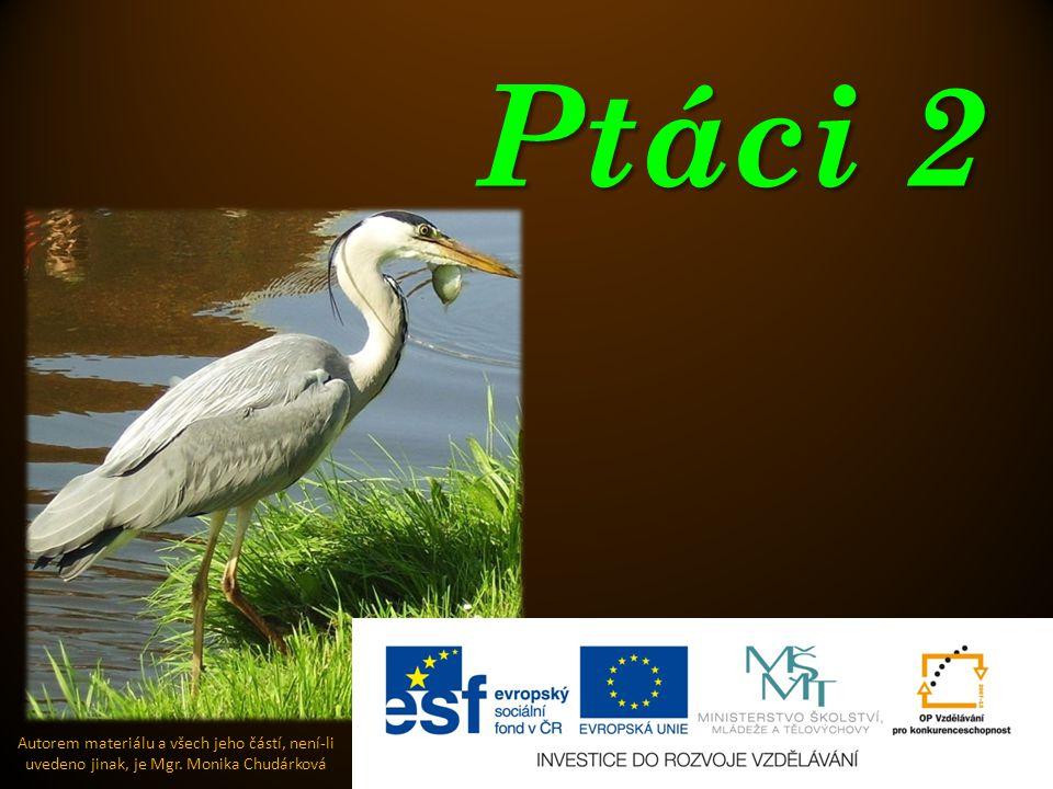 Ptáci 2 Autorem materiálu a všech jeho částí, není-li uvedeno jinak, je Mgr. Monika Chudárková
