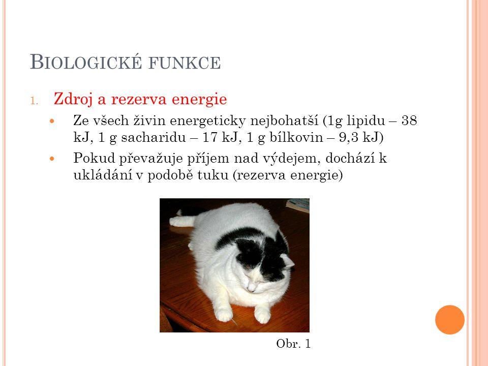 B IOLOGICKÉ FUNKCE 1.