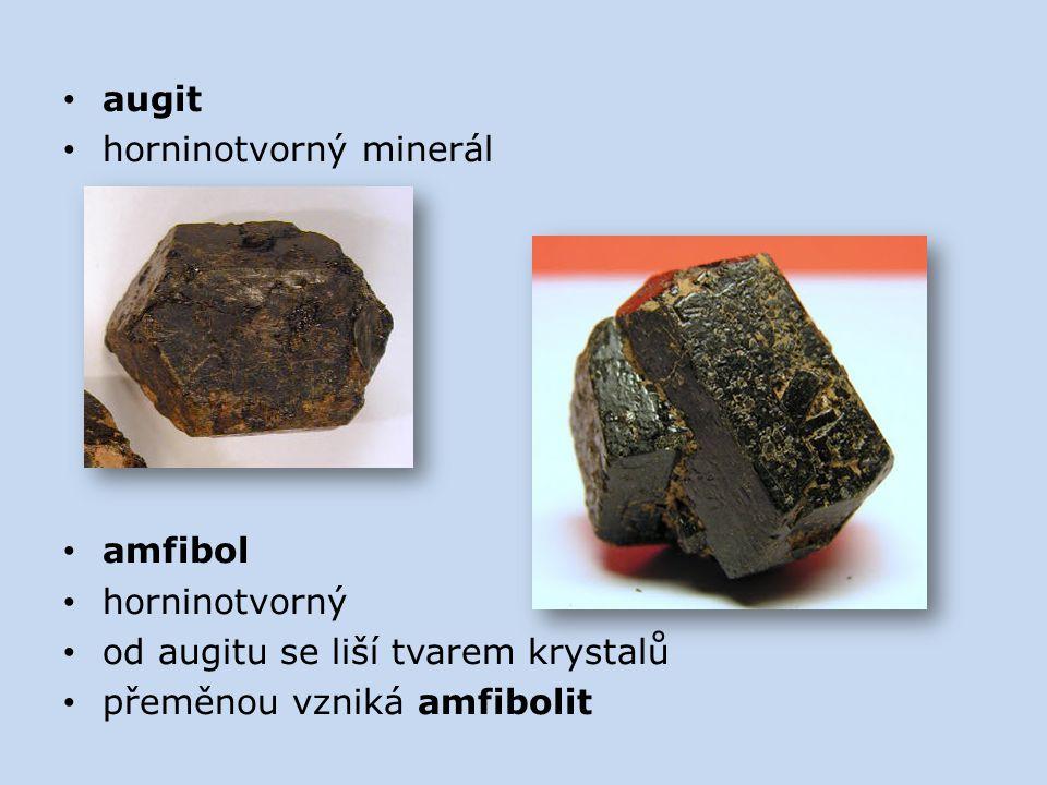 augit horninotvorný minerál amfibol horninotvorný od augitu se liší tvarem krystalů přeměnou vzniká amfibolit