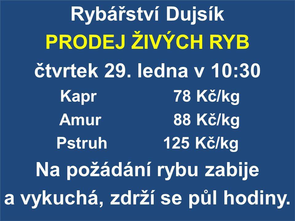 Rybářství Dujsík PRODEJ ŽIVÝCH RYB čtvrtek 29. ledna v 10:30 Kapr78 Kč/kg Amur88 Kč/kg Pstruh 125 Kč/kg Na požádání rybu zabije a vykuchá, zdrží se pů