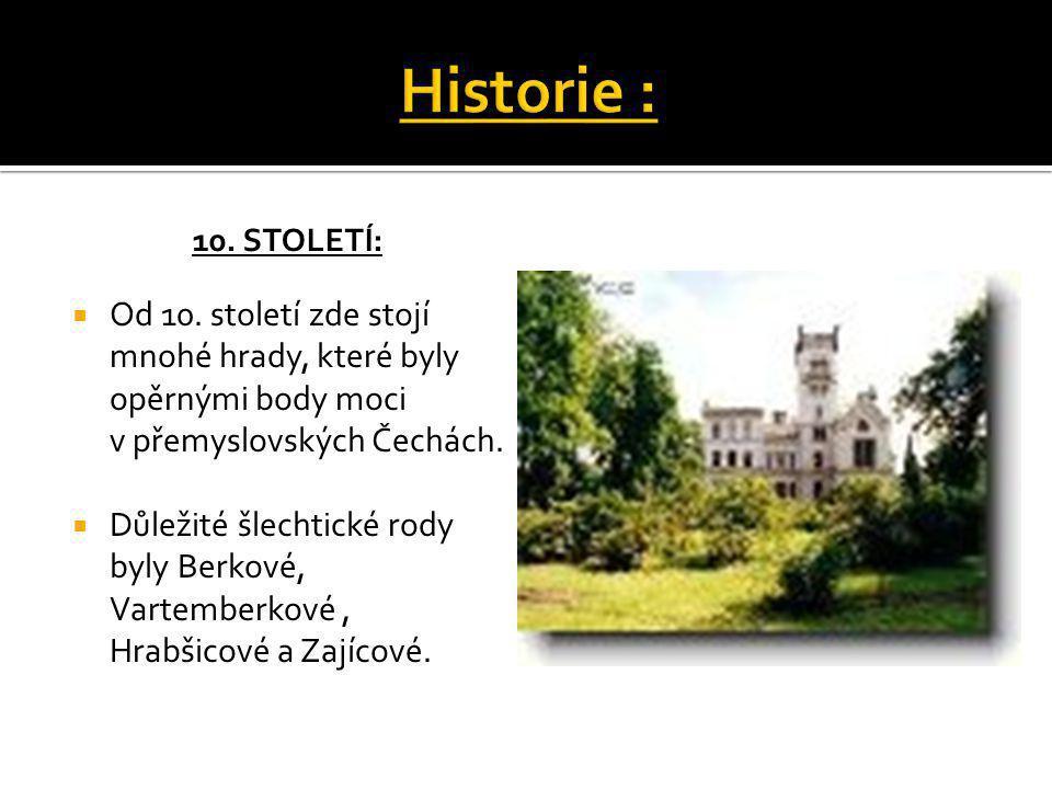10. STOLETÍ:  Od 10. století zde stojí mnohé hrady, které byly opěrnými body moci v přemyslovských Čechách.  Důležité šlechtické rody byly Berkové,