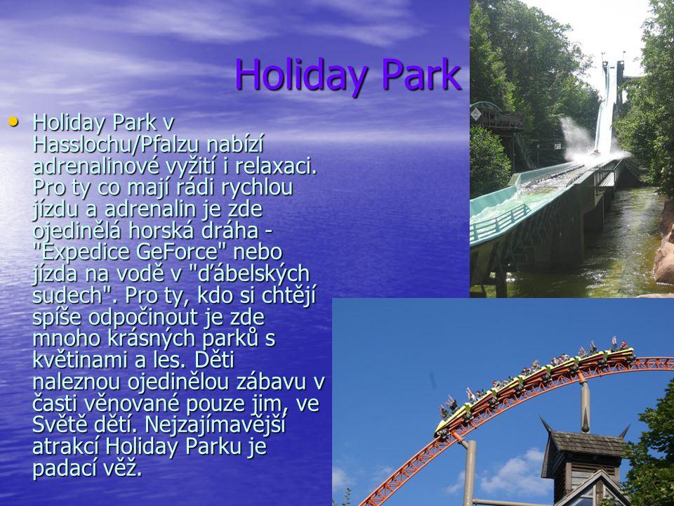 Holiday Park Holiday Park Holiday Park v Hasslochu/Pfalzu nabízí adrenalinové vyžití i relaxaci. Pro ty co mají rádi rychlou jízdu a adrenalin je zde