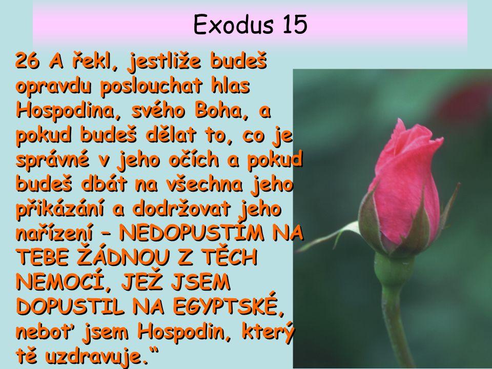 Exodus 15 26 A řekl, jestliže budeš opravdu poslouchat hlas Hospodina, svého Boha, a pokud budeš dělat to, co je správné v jeho očích a pokud budeš db