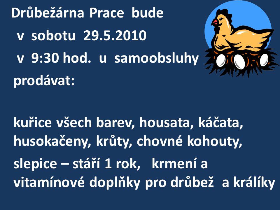 Drůbežárna Prace bude v sobotu 29.5.2010 v 9:30 hod. u samoobsluhy prodávat: kuřice všech barev, housata, káčata, husokačeny, krůty, chovné kohouty, s