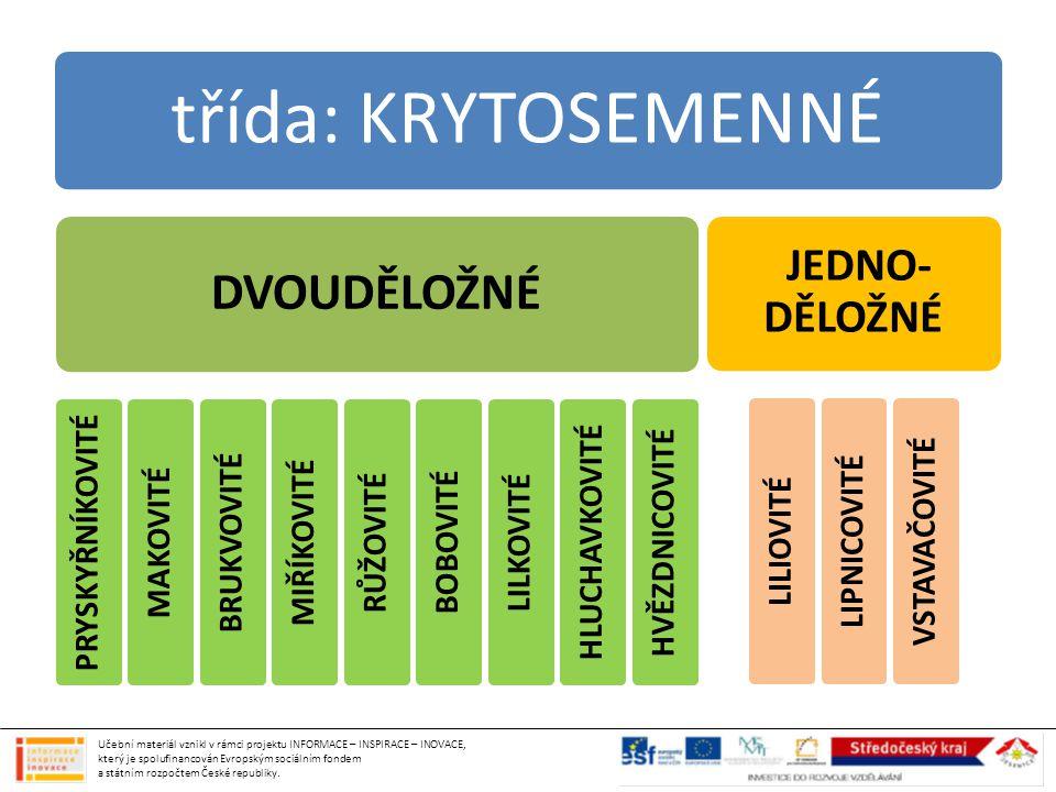 ČELEĎ: LILIOVITÉ zásobní orgán cibule většina jedovatých KVĚTY: 6 okvětních lístků PLOD: bobule, tobolka LILIE ZLATOHLÁVEK (1) SNĚŽENKA (2), BLEDULE (3) NARCIS (4), ŠAFRÁN TULIPÁN (5) Učební materiál vznikl v rámci projektu INFORMACE – INSPIRACE – INOVACE, který je spolufinancován Evropským sociálním fondem a státním rozpočtem České republiky.