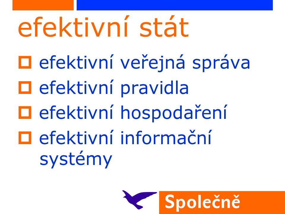 efektivní stát  efektivní veřejná správa  efektivní pravidla  efektivní hospodaření  efektivní informační systémy