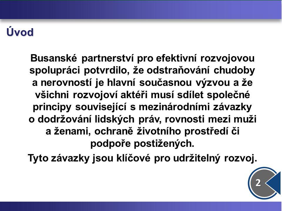13 3.Gender – stávající indikátory Miléniový rozvojový cíl č.