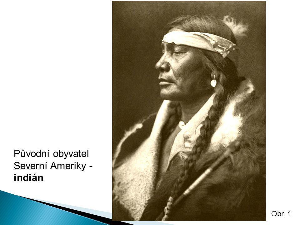 Původní obyvatel Severní Ameriky - indián Obr. 1