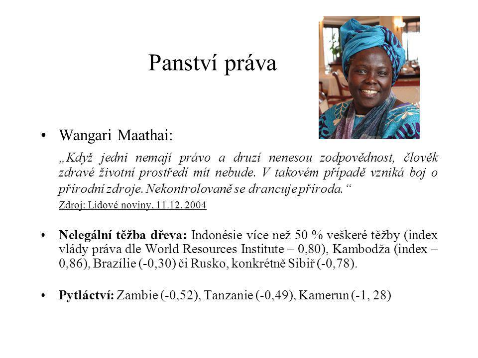 """Panství práva Wangari Maathai: """"Když jedni nemají právo a druzí nenesou zodpovědnost, člověk zdravé životní prostředí mít nebude."""