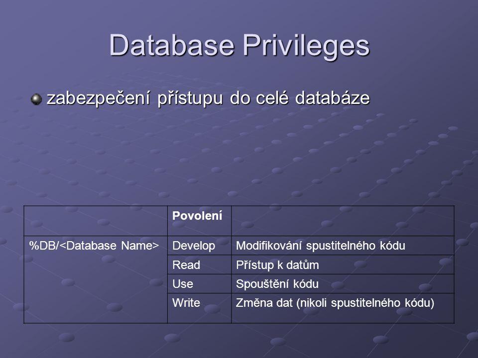 Database Privileges zabezpečení přístupu do celé databáze Povolení %DB/ DevelopModifikování spustitelného kódu ReadPřístup k datům UseSpouštění kódu W