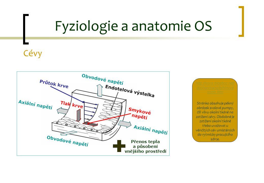 Fyziologie a anatomie OS Cévy Přenos tepla a působení vnějšího prostředí http://www.biosbcc.net/ doohan/sample/htm/ve ssels.htm Stránka obsahuje pěkný