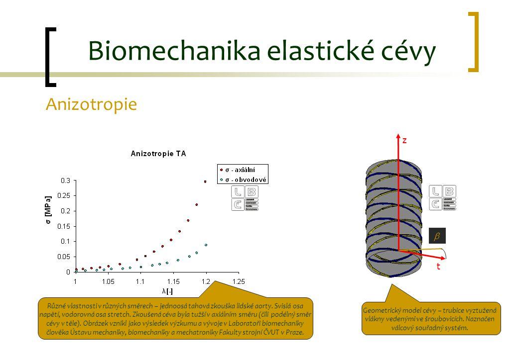 Anizotropie Biomechanika elastické cévy z t  Různé vlastnosti v různých směrech – jednoosá tahová zkouška lidské aorty. Svislá osa napětí, vodorovná
