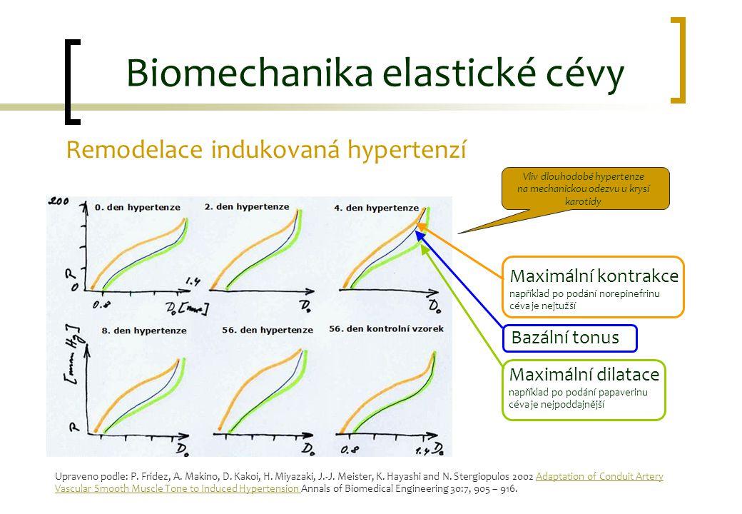 Remodelace indukovaná hypertenzí Biomechanika elastické cévy Vliv dlouhodobé hypertenze na mechanickou odezvu u krysí karotidy Maximální kontrakce nap