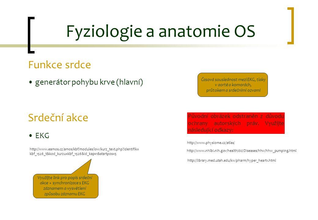 Funkce srdce generátor pohybu krve (hlavní) Srdeční akce EKG Fyziologie a anatomie OS Využijte link pro popis srdeční akce + synchronizace s EKG zázna