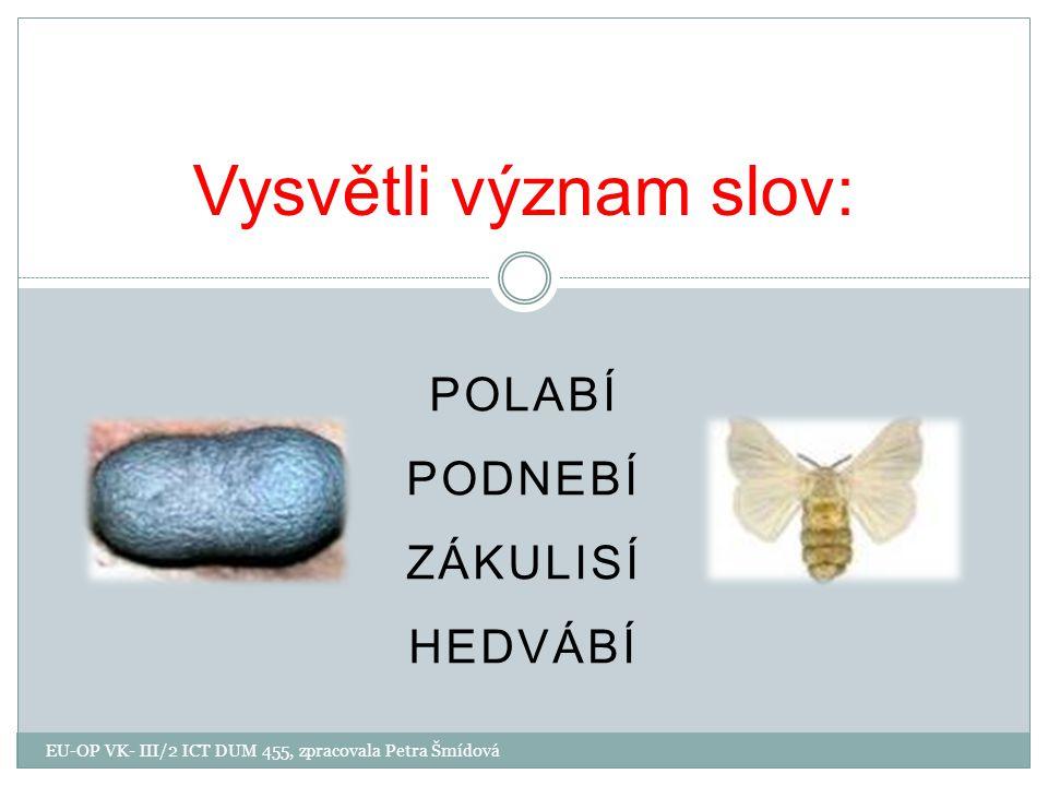 POLABÍ PODNEBÍ ZÁKULISÍ HEDVÁBÍ Vysvětli význam slov: EU-OP VK- III/2 ICT DUM 455, zpracovala Petra Šmídová