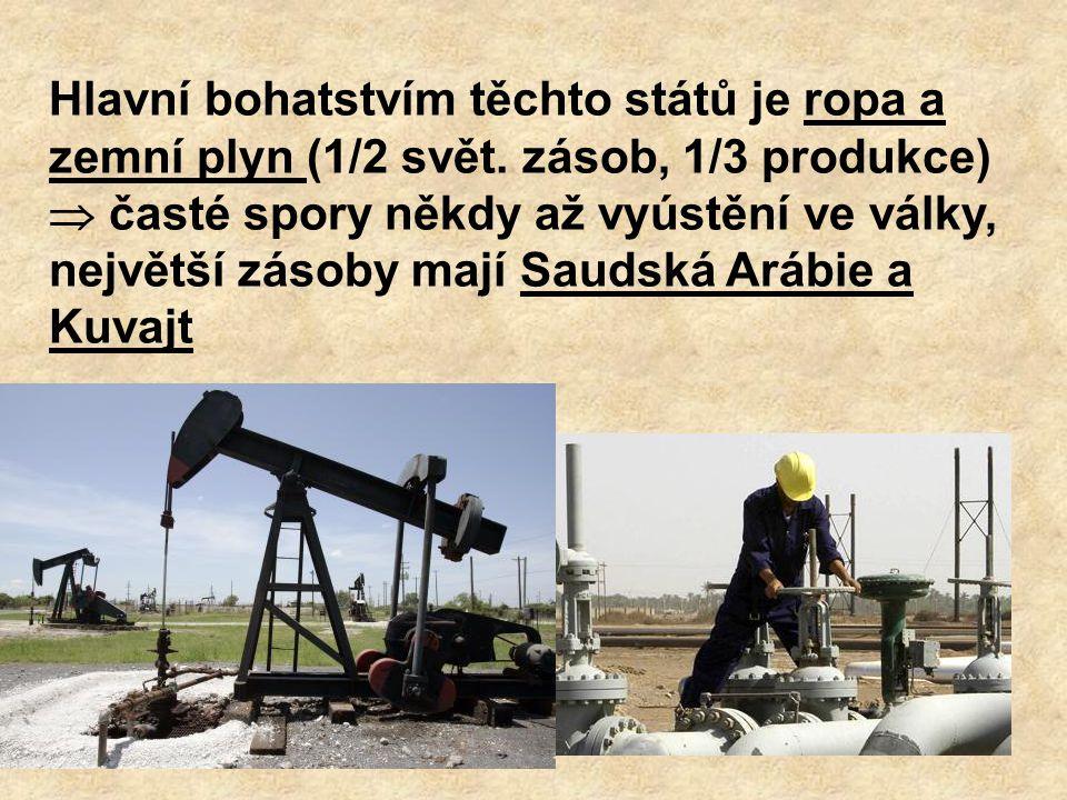 Hlavní bohatstvím těchto států je ropa a zemní plyn (1/2 svět. zásob, 1/3 produkce)  časté spory někdy až vyústění ve války, největší zásoby mají Sau