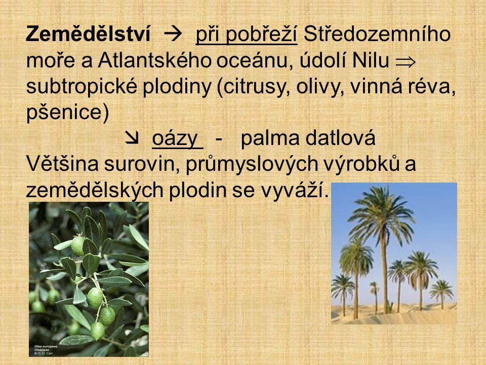 Zemědělství  při pobřeží Středozemního moře a Atlantského oceánu, údolí Nilu  subtropické plodiny (citrusy, olivy, vinná réva, pšenice)  oázy - pal