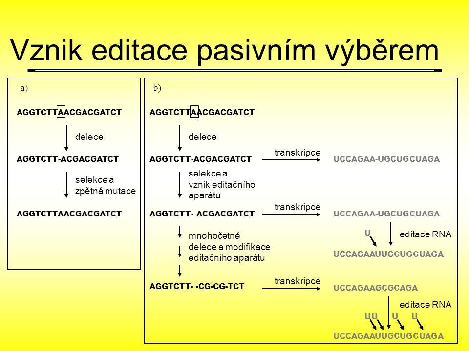 AGGTCTTAACGACGATCT AGGTCTT-ACGACGATCT UCCAGAA-UGCUGCUAGA U a)a)b) AGGTCTTAACGACGATCT delece selekce a zpětná mutace delece selekce a vznik editačního