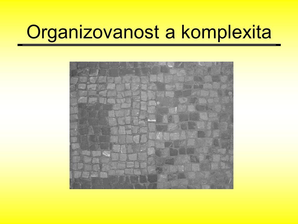 DLAŽBA Organizovanost a komplexita