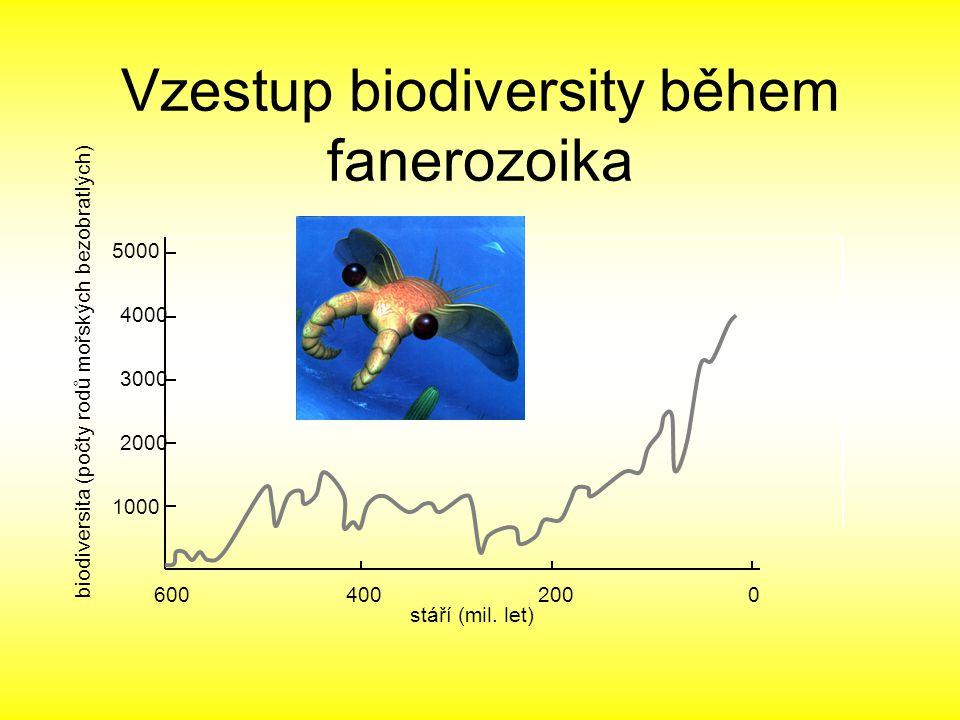 stáří (mil. let) biodiversita (počty rodů mořských bezobratlých) 600400200 0 1000 2000 3000 5000 4000 Vzestup biodiversity během fanerozoika
