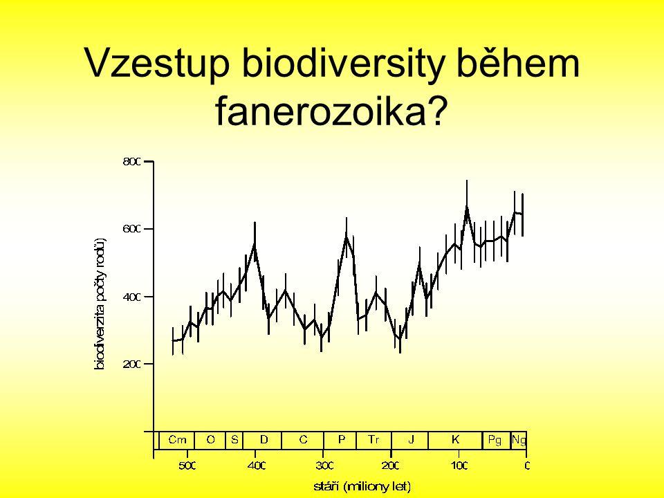 Vzestup biodiversity během fanerozoika?