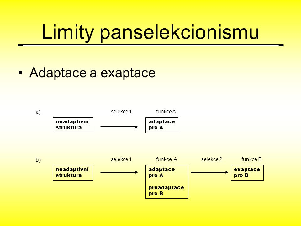 Limity panselekcionismu Adaptace a exaptace neadaptivní struktura adaptace pro A funkce A neadaptivní struktura adaptace pro A preadaptace pro B funkce Afunkce B exaptace pro B selekce 1 selekce 2 a) b)