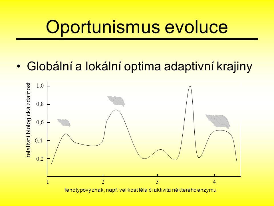 Oportunismus evoluce Globální a lokální optima adaptivní krajiny 123 4 0,2 0,4 0,6 1,0 0,8 fenotypový znak, např. velikost těla či aktivita některého