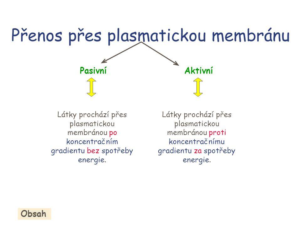 Přenos přes plasmatickou membránu PasivníAktivní Látky prochází přes plasmatickou membránou po koncentračním gradientu bez spotřeby energie.