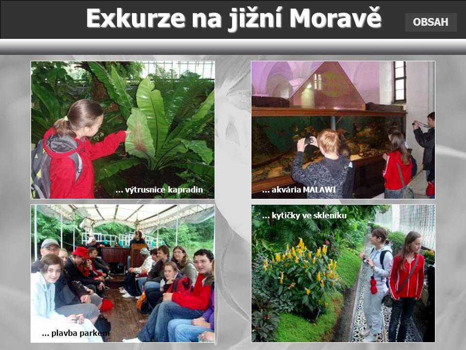 OBSAH Exkurze na jižní Moravě … výtrusnice kapradin … kytičky ve skleníku … plavba parkem … akvária MALAWI