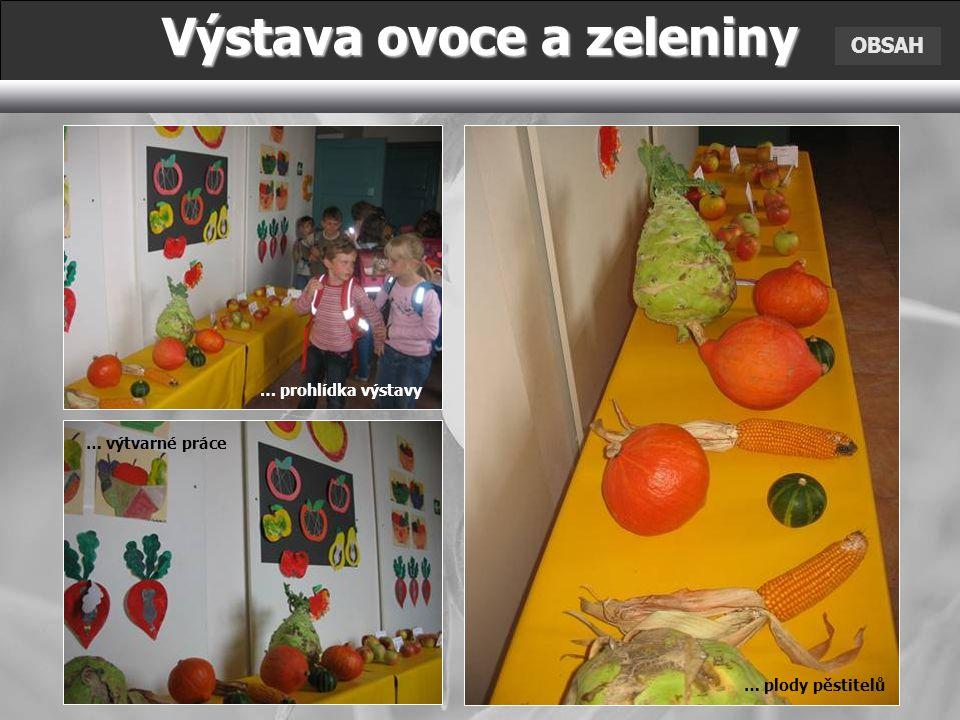 OBSAH Výstava ovoce a zeleniny … prohlídka výstavy … výtvarné práce … plody pěstitelů