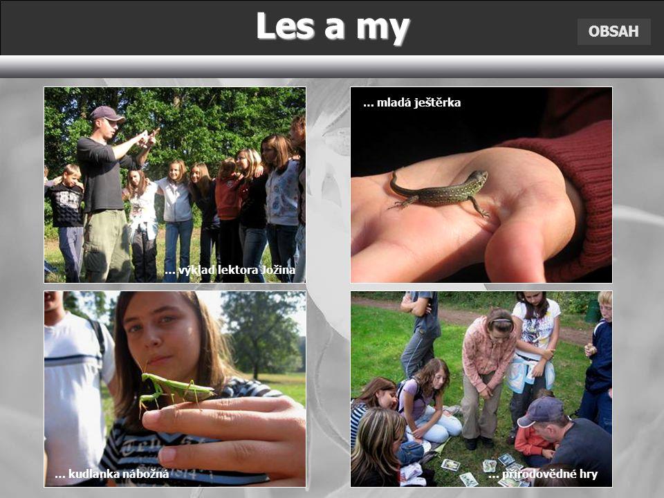 OBSAH Les a my … výklad lektora Jožina … mladá ještěrka … kudlanka nábožná … přírodovědné hry