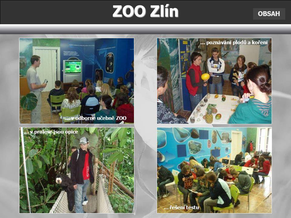 ZOO Zlín OBSAH … v odborné učebně ZOO … v pralese jsou opice … poznávání plodů a koření … řešení testu