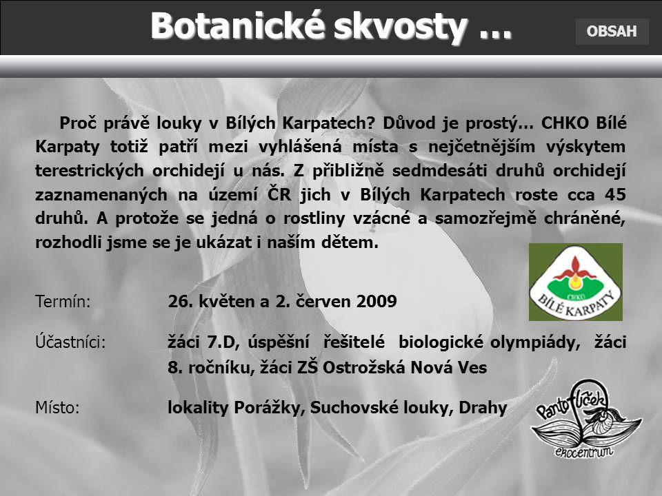 Botanické skvosty … OBSAH Proč právě louky v Bílých Karpatech.