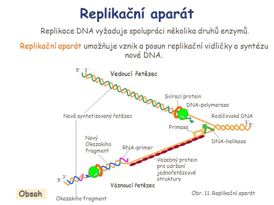Replikační aparát Replikace DNA vyžaduje spolupráci několika druhů enzymů. Replikační aparát umožňuje vznik a posun replikační vidličky a syntézu nové