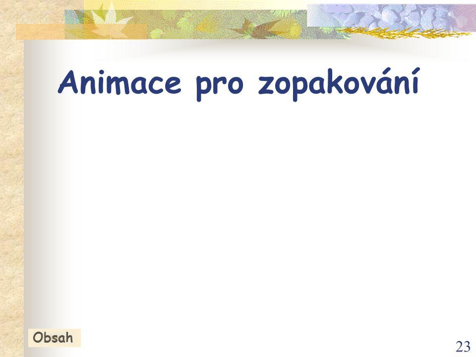 23 Animace pro zopakování Obsah