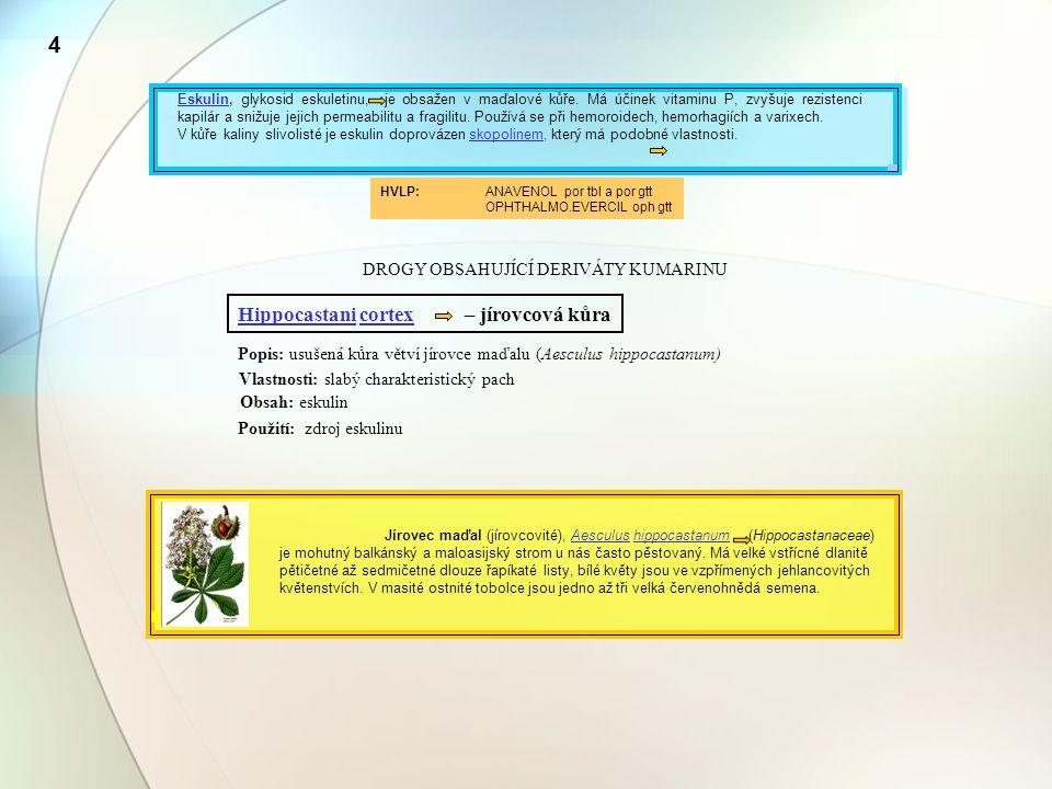 4 DROGY OBSAHUJÍCÍ DERIVÁTY KUMARINU Hippocastani cortex – jírovcová kůra Popis: usušená kůra větví jírovce maďalu (Aesculus hippocastanum) Vlastnosti