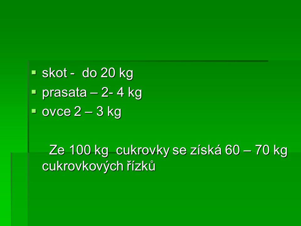  skot - do 20 kg  prasata – 2- 4 kg  ovce 2 – 3 kg Ze 100 kg cukrovky se získá 60 – 70 kg cukrovkových řízků Ze 100 kg cukrovky se získá 60 – 70 kg cukrovkových řízků