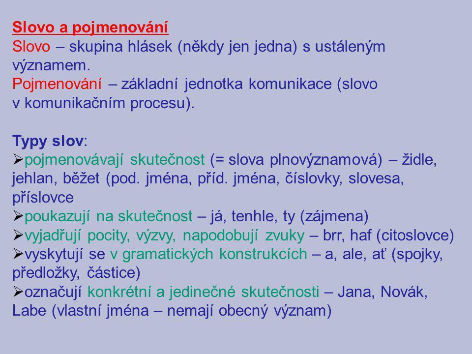 Pojmenování mohou být:  jednoslovná – řeka, krychle, kolem  víceslovná (sousloví) – spojení dvou a více slov v nedělitelný celek (hladká mouka, šicí stroj): a) odborné názvy (termíny) – skok o tyči, kočka domácí, kost holenní, velmi krátké vlny b) frazeologická spojení (frazémy) – ustálená, často metaforická spojení slov: nevětná: lev salónů, růžové brýle, pro nic za nic s přirovnáním: spát jako dudek větná: pranostiky, přísloví