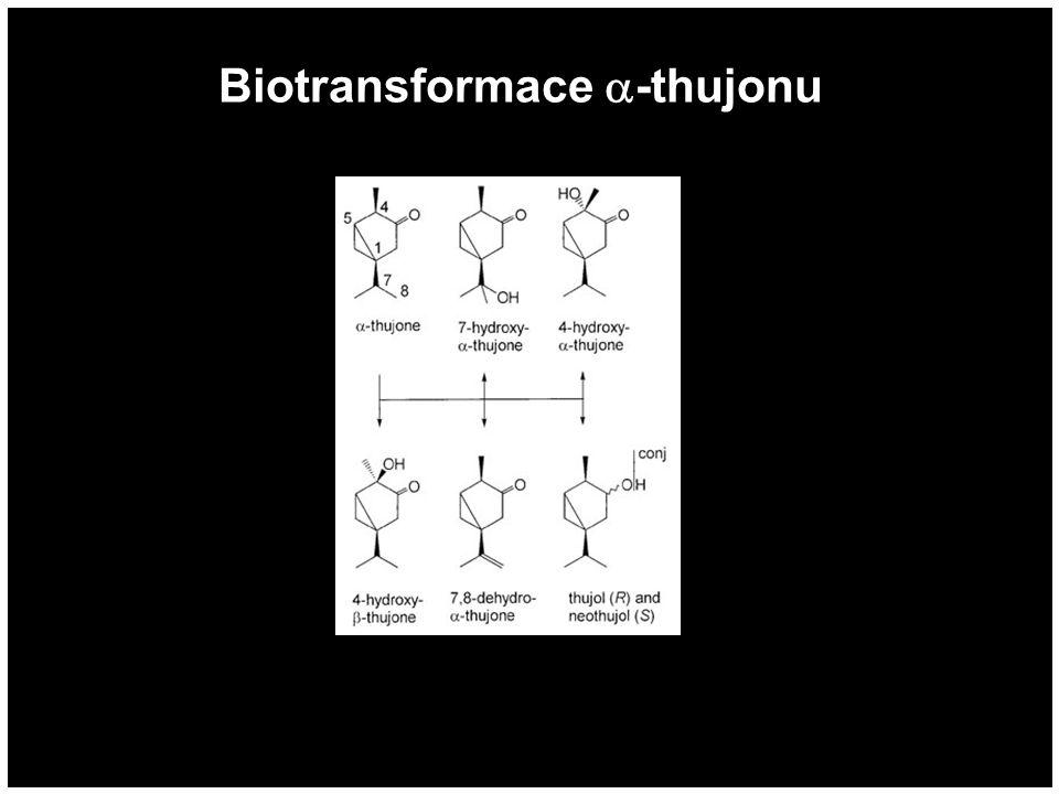 Neurotoxické účinky thujonu Meshler et.