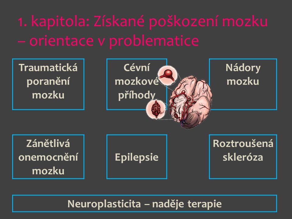 1. kapitola: Získané poškození mozku – orientace v problematice Traumatická poranění mozku Cévní mozkové příhody Nádory mozku Zánětlivá onemocnění moz
