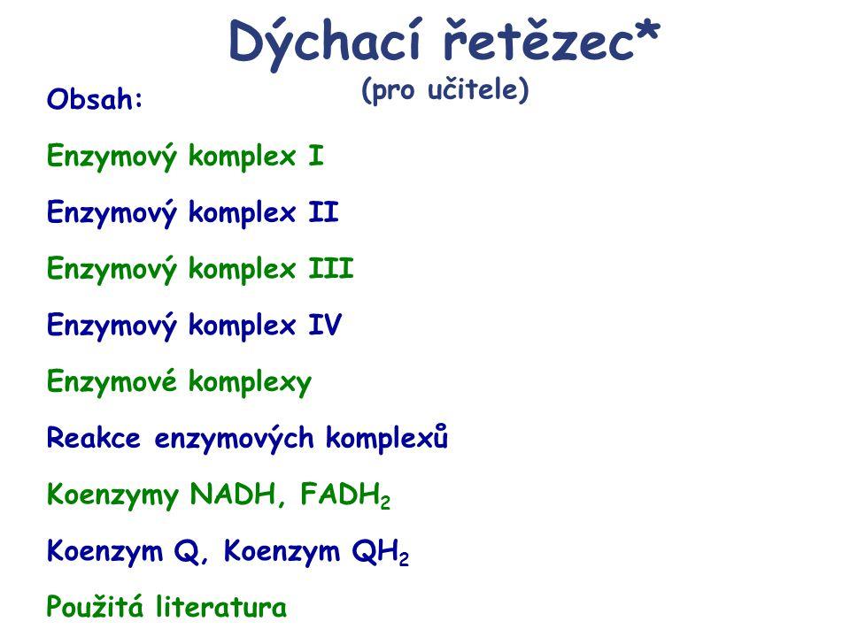 Dýchací řetězec* (pro učitele) Enzymový komplex I Koenzymy NADH, FADH 2 Koenzym Q, Koenzym QH 2 Reakce enzymových komplexů Použitá literatura Obsah: E